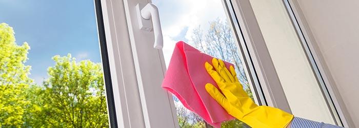 pvc ramen deuren Vorst